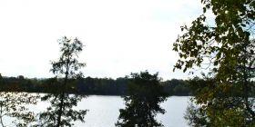 Działki przy jeziorze